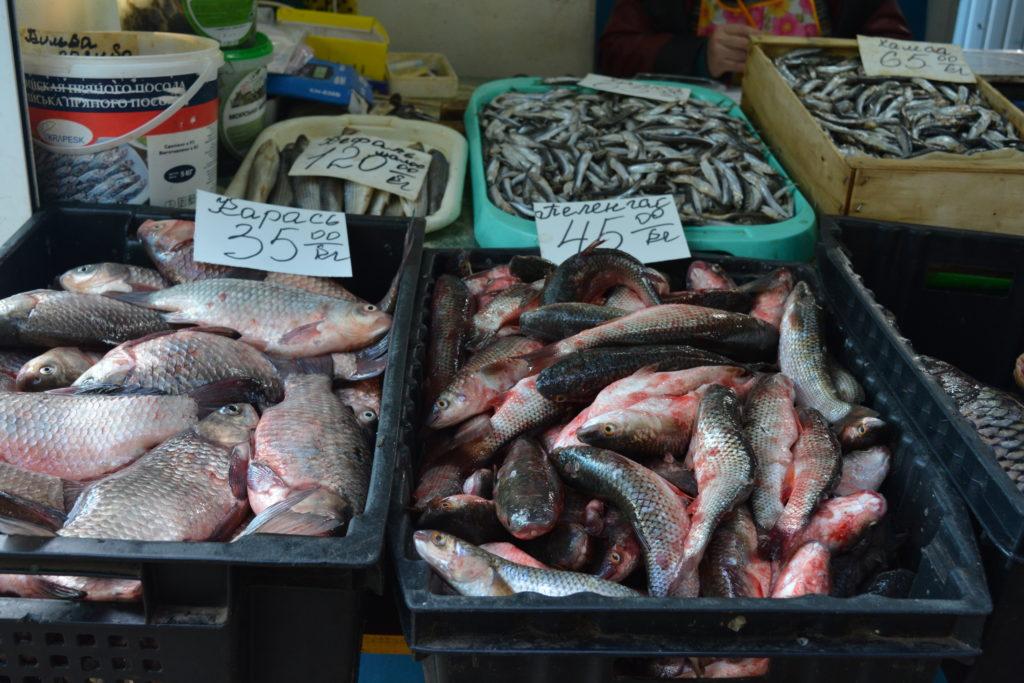 Скадовський ринок. Рибні ряди